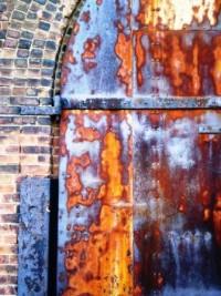 Dumbo Door